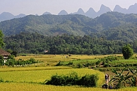 discovery-the-road-from-bac-ha-to-hoang-su-phi-of-ha-giang